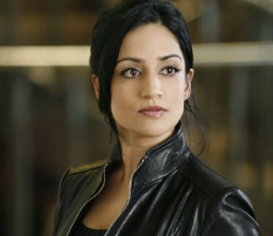 Kalinda (Archie Panjabi) investigates the neighborhood, on THE G