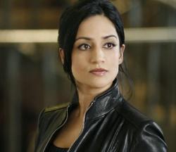 Kalinda (Archie Panjabi) investigates the neighborhood, on THE G